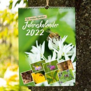 Jahreskalender 2022 Die moderne Kräuterhexe