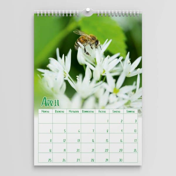 Jahreskalender 2022