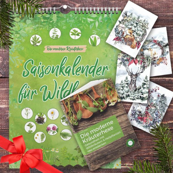Weihnachtsset Kalender, Buch und Weihnachtskarten