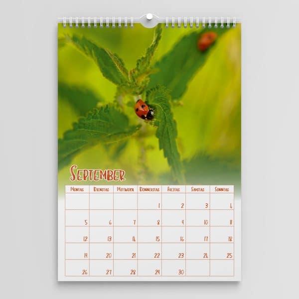 Kalender 2022 September