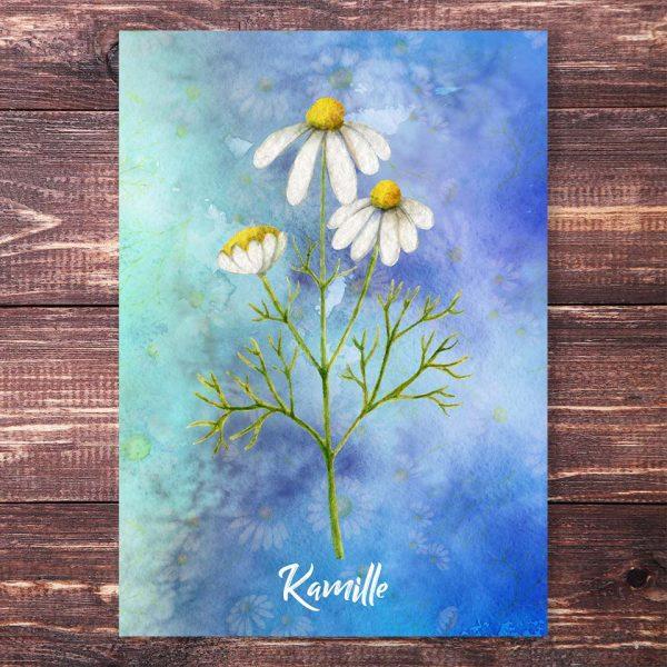 Postkarte Kamille